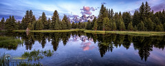 Peaceful Schwabacher Landing (Theaterwiz) Tags: sunrise peaceful tranquility tetons grandtetonnationalpark snowcaps schwabacherlanding moosewyoming theaterwiz michaelcriswellphotography nxnw2016 expeditionteton