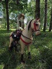 IMG_4533 (xaskixarf) Tags: horse kyle bjd wish jointed battat dollleaves