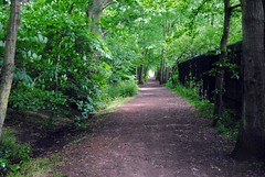 Through the woods to Falconwood (zawtowers) Tags: london sunshine woodland walking 1 warm path walk exploring capital july saturday railway line ring 2nd showers stroll section a2 amble 2016 falconwood woolwichfoottunneltofalconwood