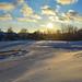 Snow in Peoria