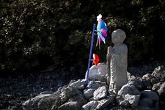 0210 (Shota Fukuda) Tags: japan    temple