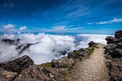walk on the wild side (=Я|Rod=) Tags: fujixt1 madeira holiday vacation xf1024