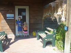 P1140564-081116 (octoberblue13) Tags: ithaca ny ecovillage common house garlic