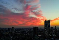 Sunset clouds (takanorimutoh) Tags: sunset dp2merrill tokyo hdr colorsinourworld