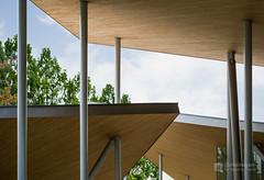 Roofs of Okayama University, Junko Fukutake Hall (岡山大学 Junko Fukutake Hall) (christinayan01) Tags: architecture building perspective hall japan sanaa sejima kazuyo nishizawa ryue roof