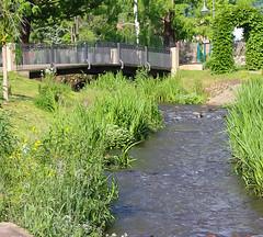 Kurpark, Bad Drkheim (JrnLenhardt) Tags: baddrkheim kurpark pfalz