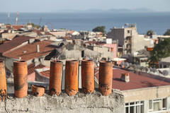 Istanbul (mashburger) Tags: travel digital turkey europe istanbul canon5dmkii 5dmkii