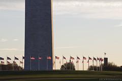 The Washington Monument (sdlawsonphoto) Tags: morning autumn usa fall sunrise washingtondc washington flags nationalmall americanflags washingtonmonument starsandstripes canon6d sdlawsonphoto