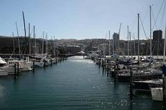 Marina de Wellington