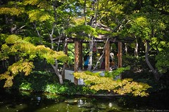 Japanese Gardens (RRP Photography) Tags: borderfx