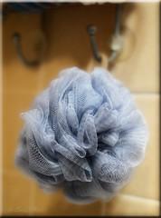 ODC-Blue Scrunchie (It Sure Feels Like Fall, Love It!!!) Tags: blue wall bathroom hanging hook scrunchie odc