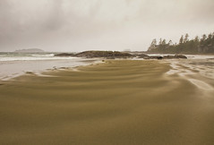 Chesterman Beach in the pouring rain. (Freshairphotography) Tags: ocean light brown mist canada storm tourism beach nature water beautiful beauty rain clouds canon island coast nationalpark sand waves bc view relaxing peaceful stormy tourist vancouverisland pacificocean rainy browns views tofino raindrops serene ripples lowtide westcoast tidepools tidepool tidal ucluelet rainfall waterflow chestermanbeach canon7d janismorrisonfreshairphotography