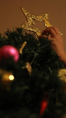 Navidad (bocetos.films) Tags: christmas tree green girl star navidad kid hand little christmastree