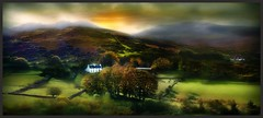 An Irish Dream (RobMcA Photography) Tags: trees ireland irish landscape country dreams farms robireland