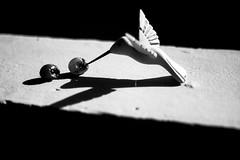 Sin sabor, sin color (Edgar Sagra) Tags: bw stilllife white black bird blancoynegro uva sombras
