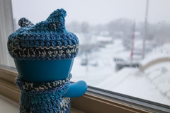 Uglyworld #2514 - Wooly Hats Weathers - (Project On The Go - Image 344-365) (www.bazpics.com) Tags: new blue winter white snow newyork wool window cookies look hat weather project toy outside hotel blog december day action handmade room crochet steps vinyl knit upstate daily website figure albany jumper 10th 365 adventures custom uglydoll total wooly whiteout wedgie uglydolls 2014 wedgehead uglyworld prettyugly barryoneilphotography adventuresinuglyworld uglyadventures