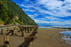 Clayton Beach (http://fineartamerica.com/profiles/robert-bales.ht) Tags: blue seascape beach beautiful clouds burlington wow spectacular photo washington rocks superb awesome scenic surreal peaceful sanjuan bellingham sensational pilings seacapes inspirational spiritual anacortes sublime washingtonstate fairhaven magical tranquil magnificent inspiring haybales larrabee stupendous chuckanut chuckanutbay skagitcounty whatcomcounty washingtonstatepark samishbay northwestwashington larrabeestatepark oldrailroadtrack canonshooter rosariostrait coastalphotography robertbales