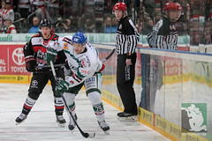 """DEL15 Kölner Haie vs. Augsburg Panthers 10.12.2014 053.jpg • <a style=""""font-size:0.8em;"""" href=""""http://www.flickr.com/photos/64442770@N03/15843208659/"""" target=""""_blank"""">View on Flickr</a>"""