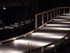 Abstract Walkways (rclatter) Tags: christmas olympus longwoodgardens em1 40150mm