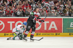 """DEL15 Kšlner Haie vs. Augsburg Panthers • <a style=""""font-size:0.8em;"""" href=""""http://www.flickr.com/photos/64442770@N03/16116149769/"""" target=""""_blank"""">View on Flickr</a>"""