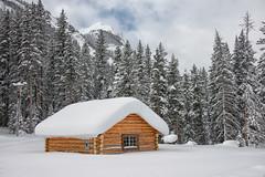 Snowed In (dbushue) Tags: trees winter snow mountains nature landscape snowshoe cabin nikon scenery montana january trail 2014 cookecity bannocktrail dailynaturetnc14