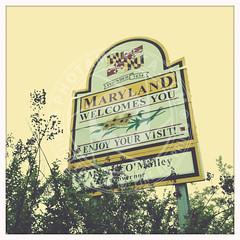 MARYLAND-555