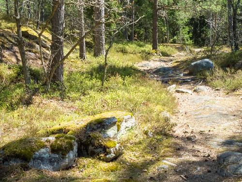 Grimsta Woods Vällingby