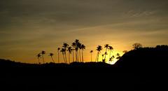 Nacpan Beach (mariaveronicaaa) Tags: sunset silhouette philippines elnido palawan nacpan nacpanbeach