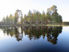 mokkiranta (VisitLakeland) Tags: blue summer lake tree green nature water forest finland calm puu lakeland vesi mets kes luonto jrvi tyyni kuopiotahko