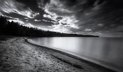 Floating Sky (Kevin Chileong Lee) Tags: strand see sand wasser schweden fineart wolken holz wald bume langzeitbelichtung baumstamm habo