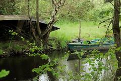 Tableau de Brire (aurelie.a) Tags: nature reflet tableau paysage marais calme verdure barque paysdelaloire loireatlantique brire chaland