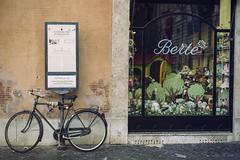 Paseggiata a Roma (Kybenfocando) Tags: city italy rome roma bike vintage europe italia bicicleta bici ville citt landascape vel