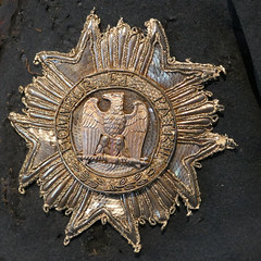 Embroidered star - Napoleon's jacket (Monceau) Tags: emblem star eagle exhibition jacket napoleon embroidered musedelarme saintehlne napolon1er