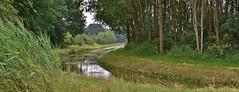 'Achterste Weide' (henkmulder887) Tags: panorama nature landscape weide 2000 natur natuur natura drenthe landschap vaart ree achterste watergang uffelte wilgenroosje kattenstaart duinroos zwdrenthe oudevaartvaartwatergangnatura2000natura