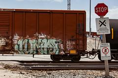 (o texano) Tags: bench graffiti texas houston trains jumps freights nfm benching