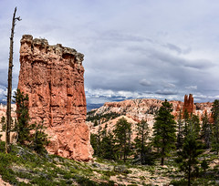 Leftovers (armand.gerstenberger) Tags: ifttt 500px bryce national park utah southern travel road trip landscape orange rocks panarama armand gerstenberger