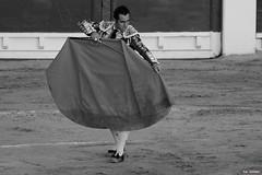 Matador (Fotomondeo) Tags: toro toros plazadetoros corridadetoros bull bullfight bullfighter bullring matador torero hoguerasdesanjuan fogueres alicante alacant spain espaa elfandi