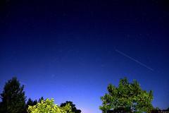 Perseid Meteor (Mystycat =^..^=) Tags: persides toilefilante nuit night stars toiles arbres trees sky ciel photoshopcs5 perseidmeteor