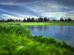 The bay (mrbillt6) Tags: northdakota jamestown reservoir landscape lake grass green blue trees prairie plains greatplains sky outdoors