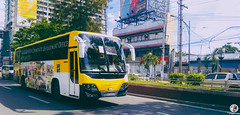 Growling Hino (rnrngrc) Tags: school shuttle ust rm p11 universityofsantotomas hmpc pbpa p11c p11cth grandecho rm2pss philippinebusphotographersassociation hinomotorsphilippinescorporation