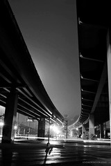 OVERPASS - DOWNTOWN DALLAS (Andrew Moura) Tags: andrew moura west end station trains fire department first responders texas public aid medical paramedics health photography art rescue alert platform blacks sick emergency street mature nikon canon sony girls women crime jail police pd blackandwhite dart american umbrella fans summer heat rapid transit corn blackwhite eat dinner society photojo alcoholism homeless new mexico shopping cart beer wine booze drink outdoor