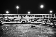 portugal 2016 (SimonSawSunlight) Tags: black white documentary photography portugal 2016 bullfight bull fight corrida touros alcacerdosal