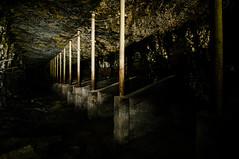 mule stalls at the king mine (Sam Scholes) Tags: abandoned digital utah nikon mine historic mining coal decrepit damaged mules mule hiawatha d300 kingcoal utahhistory kingmine usfco unitedstatesfuelcompany mulestalls