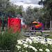 © Magog – 2014 - Parcs principaux - Parc de la Baie de Magog 3