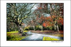 SPRINGFIELD PARK........ (Derek Hyamson) Tags: liverpool hdr springfieldpark chidhood alderhey knottyash