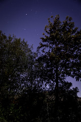 Moonlit night shooting (Eleventh Earl) Tags: california november guy bulb night nikon long exposure remember southern moonlit socal moonlight dslr 5th fawkes d5200