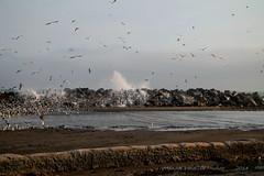 La Punta (Manuel Valdivia Muoz) Tags: peru la lima punta callao