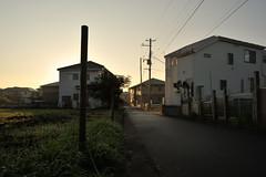 2008/11/17 07:08 Fujisawa (Masayo Nabeshima) Tags: morning sunlight season nikon d3