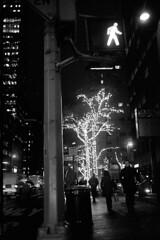 Late night NYC (bc50099) Tags: street new leica york city night 35mm manhattan trix 15 nikkor development f25 m4 degrees celsius semistand