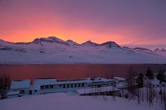 The view from my balcony (*Jonina*) Tags: iceland ísland faskrudsfjordur fáskrúðsfjörður evening síðdegi sunset sólsetur reflection speglun mountains fjöll digritindur jónínaguðrúnóskarsdóttir 25faves 500views 1500views